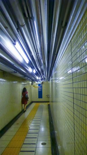 TunnelOfPipes_900